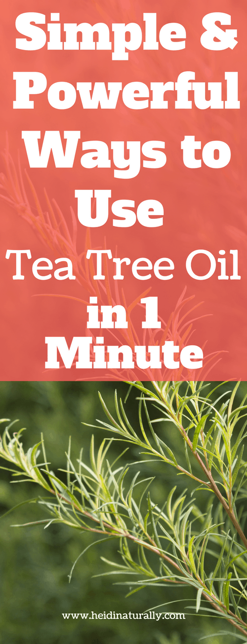 Find out how to use tea tree oil for powerful results. Learn the best recipes and tips on using tea tree oil most effectively and quickly.