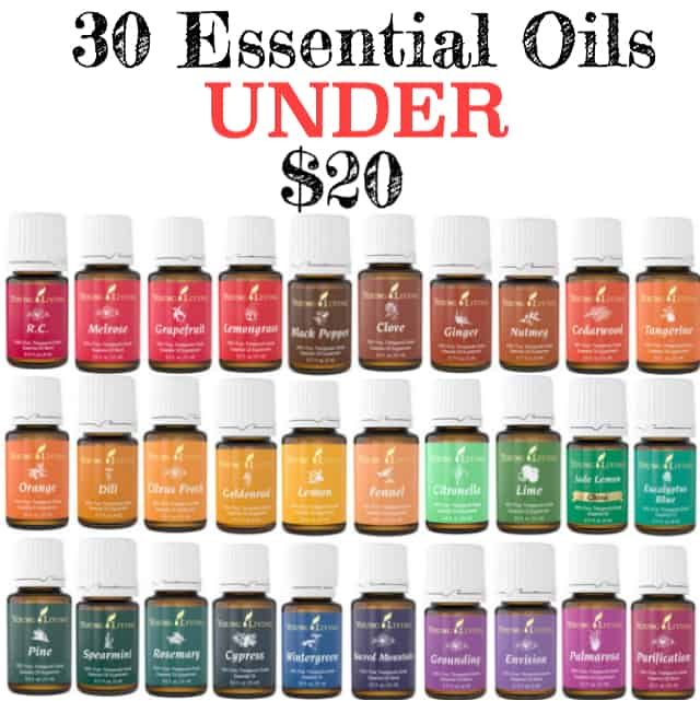 essential oils under $20