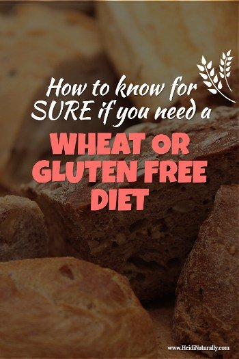 wheat and gluten free
